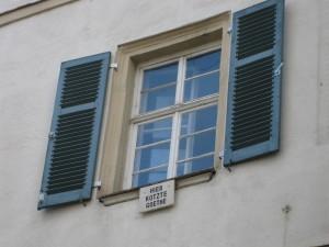 Goethe_kotzt