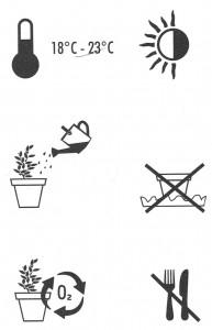 Pflanzen-Piktos