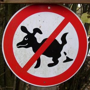 Mücke-Atzenhain: Verbotsschild Hundehaufen (am Großen Holzwiesenteich)